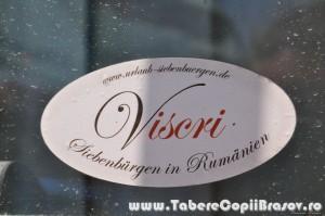 taberecopiibrasov Viscri